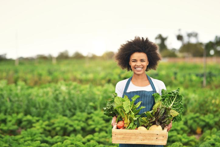 mercado de orgânicos